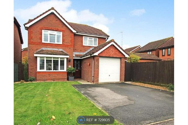 Thumbnail Detached house to rent in Bullfinch Close, Swindon