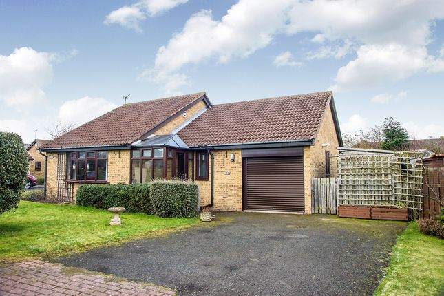 Thumbnail Bungalow for sale in Benlaw Grove, Felton, Morpeth