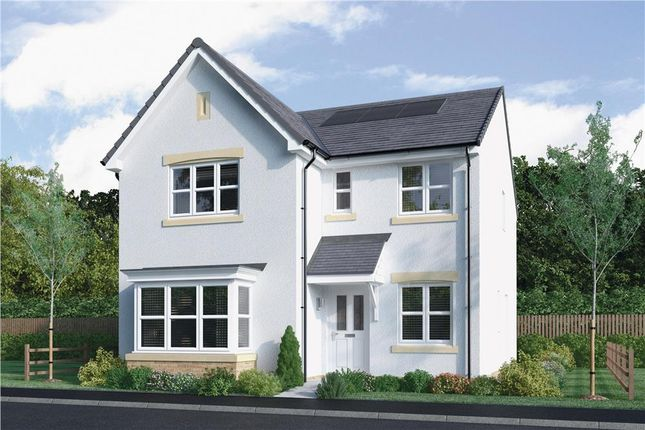 "Thumbnail Detached house for sale in ""Strachan"" at Mcdonald Street, Dunfermline"