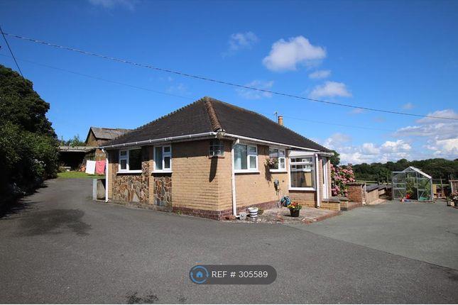 Thumbnail Bungalow to rent in Hall Lane, Wrexham