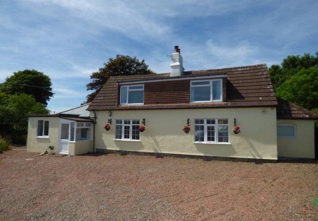 Thumbnail Detached house for sale in Stott Foot Cottage, Longtown, Carlisle, Cumbria