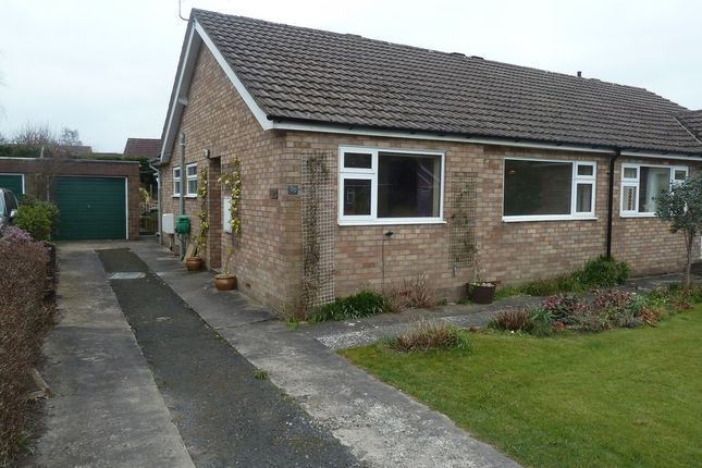 Thumbnail Semi-detached bungalow to rent in Cunnery Road, Church Stretton