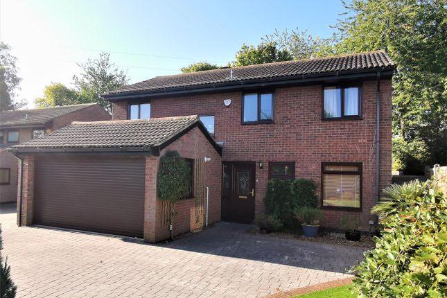 Thumbnail Detached house for sale in Olivers Walk, Lychpit, Basingstoke