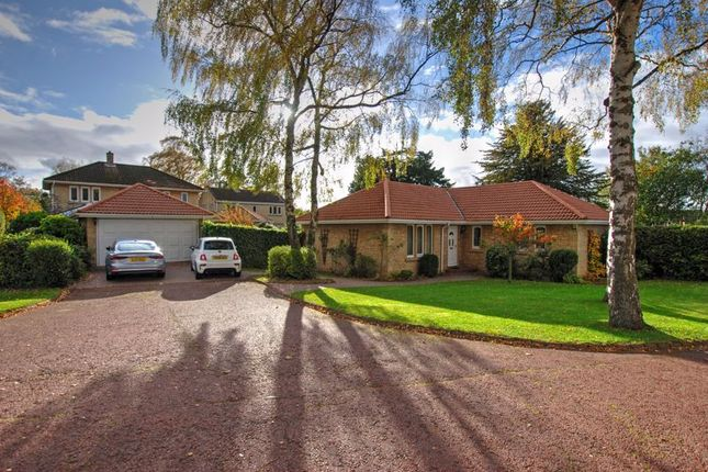 Thumbnail Detached bungalow for sale in Juniper Close, North Gosforth, Newcastle Upon Tyne