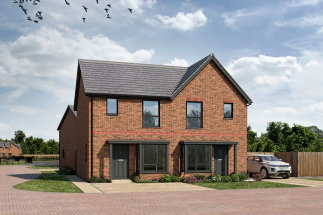 Thumbnail Semi-detached house for sale in 'the Hatton' Caerwent Close, Dinas Powys