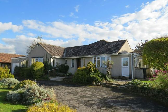 Thumbnail Detached bungalow for sale in Hill Lane, Rowberrow, Winscombe