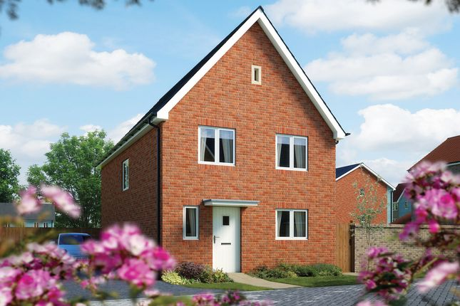 "Thumbnail Detached house for sale in ""The Salisbury"" at Fordham Road, Soham, Ely"