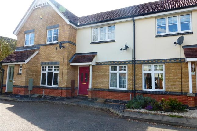 Thumbnail Terraced house to rent in Crabs Croft, Braintree