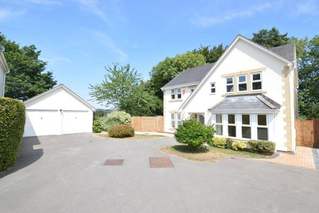 Thumbnail Detached house for sale in Orleigh Park, Newton Abbot, Devon