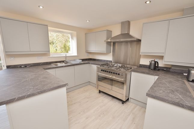 Thumbnail Semi-detached house to rent in Juniper Close, Guildford