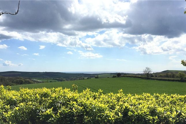 Thumbnail Detached bungalow to rent in Clover Hill, Chilcombe Lane, Chilcombe, Bridport