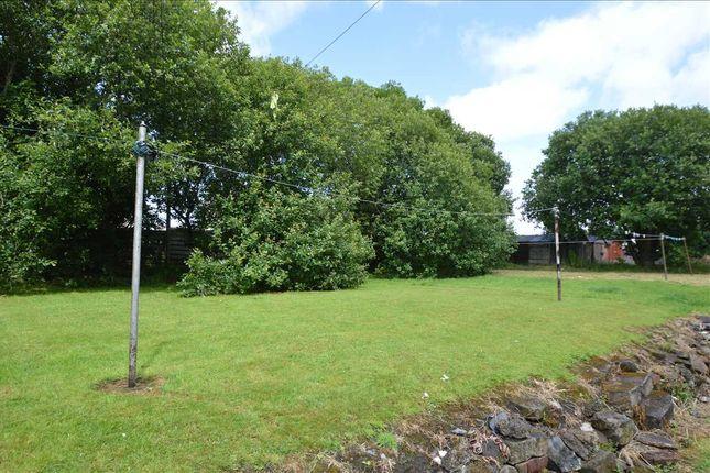 Garden of Clydesdale Road, Bellshill ML4