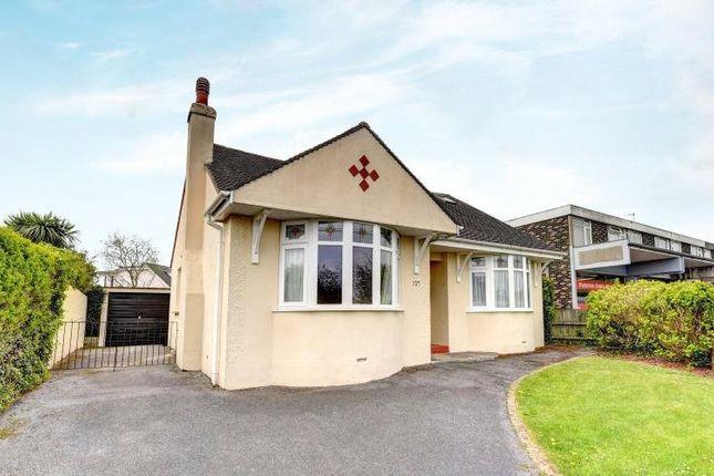 Thumbnail 2 bed detached bungalow to rent in Preston Down Road, Preston, Paignton, Devon