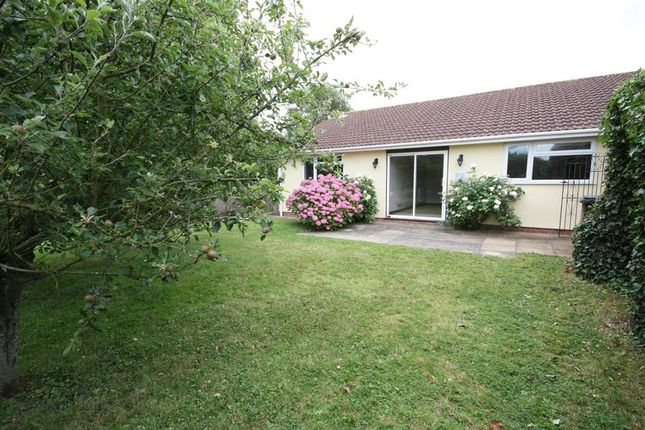 Thumbnail Semi-detached bungalow to rent in Brendon Road, Watchet