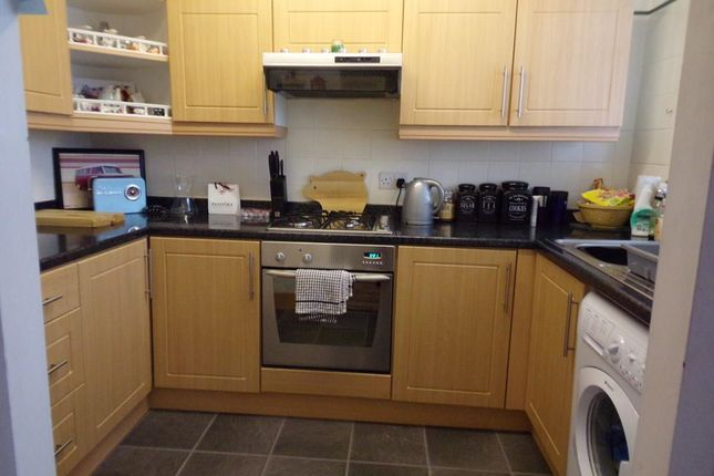Thumbnail Terraced house to rent in Tenby Square, Cramlington