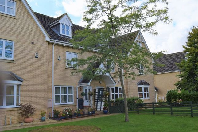 Thumbnail Terraced house to rent in Ermine Street North, Papworth Everard, Cambridge