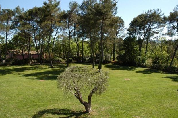 Picture No. 04 of St Paul En Forêt, Fayence, Côte D'azur, 83440