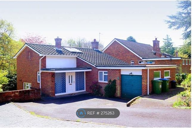 Thumbnail Detached house to rent in Woodview Close, Southampton