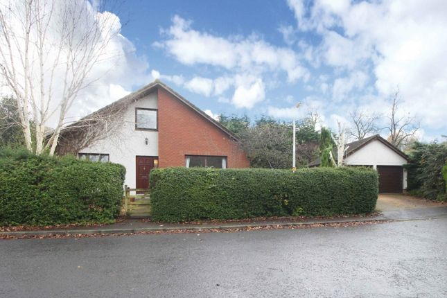 Thumbnail Property for sale in Burnmouth Road, Little Dunkeld, Birnam, Perthshire