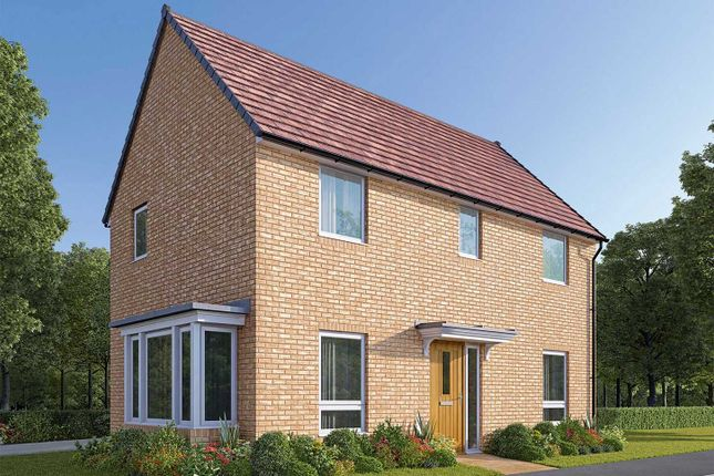 "Thumbnail Detached house for sale in ""The Fernwood"" at Bede Ling, West Bridgford, Nottingham"
