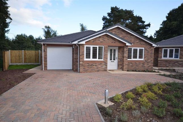 Thumbnail Detached bungalow for sale in Groundslow, Tittensor, Stoke-On-Trent