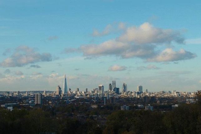 Local View of Wood Vale, Southwark, London SE23