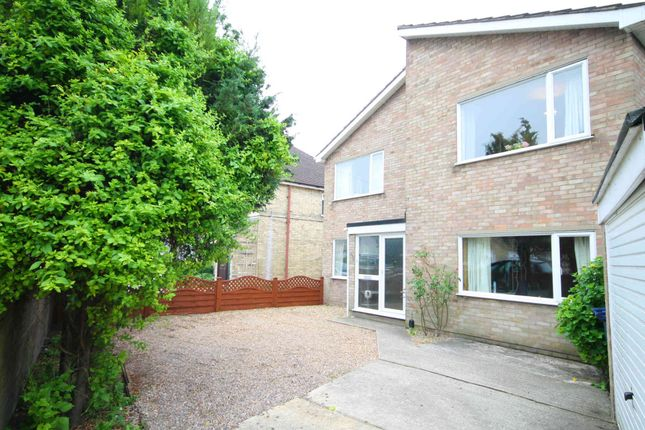 Thumbnail Detached house to rent in Coldhams Lane, Cambridge