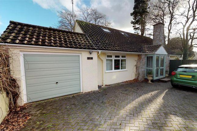 Thumbnail Detached bungalow for sale in Lindthorpe Way, Brixham, Devon
