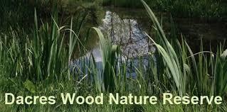 Dacres Wood Nature