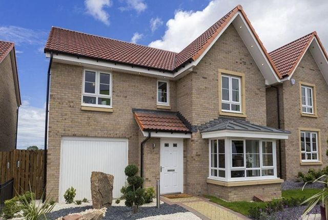 Thumbnail Detached house for sale in Manse Road, Stonehouse, Larkhall