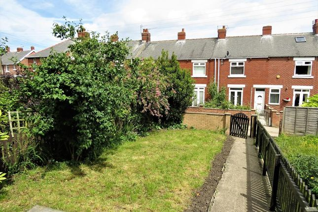 Garden of Carlton Terrace, Easington Village, County Durham SR8