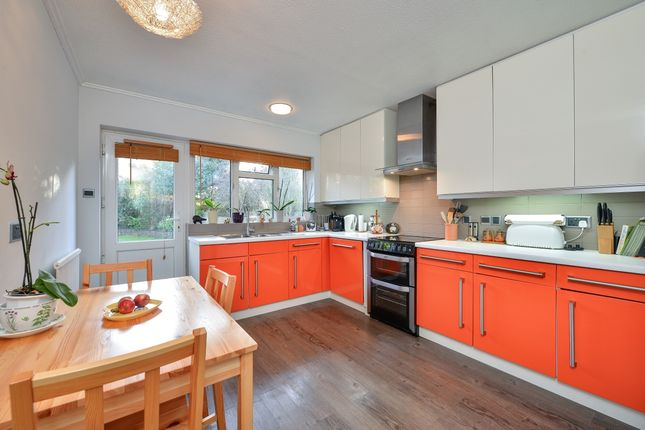 Thumbnail Bungalow to rent in Tredcroft Road, Hove