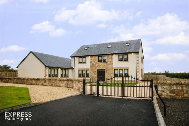 Thumbnail Detached house for sale in Glen Avon Mews, Larkhall, South Lanarkshire