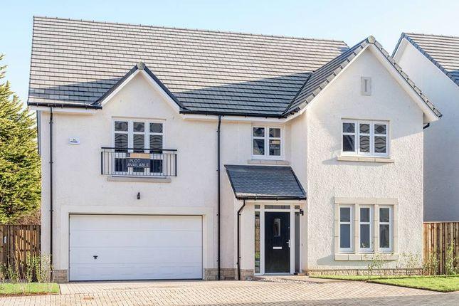 "Thumbnail Detached house for sale in ""The Lewis"" at Edinburgh Road, Belhaven, Dunbar"