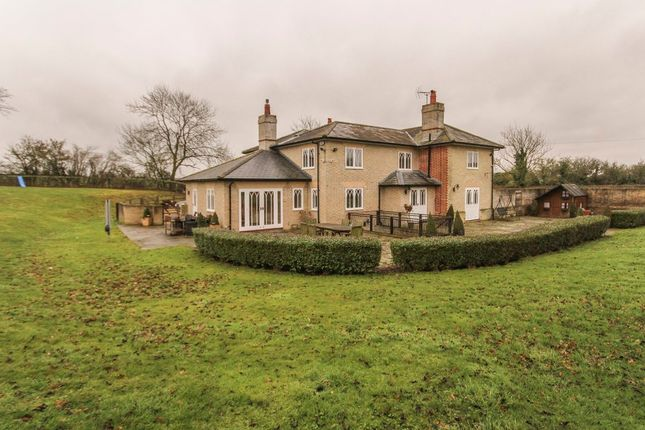 Thumbnail Detached house to rent in Chevington, Bury St. Edmunds