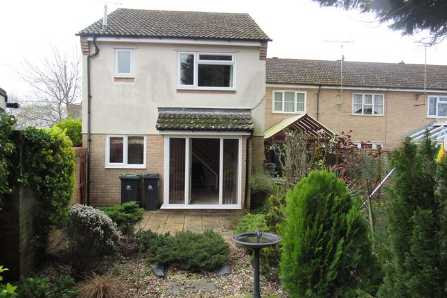 Thumbnail Semi-detached house to rent in The Curlews, Verwood