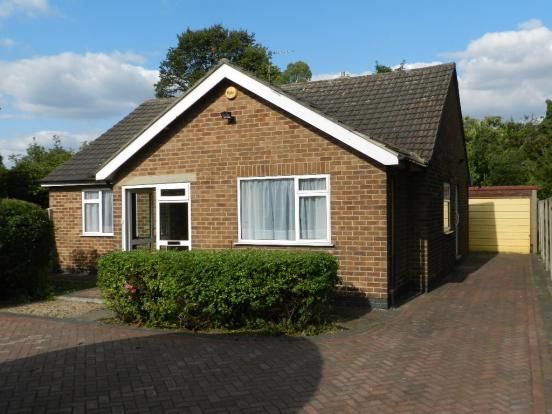 Thumbnail Bungalow to rent in Breckhill Road, Mapperley