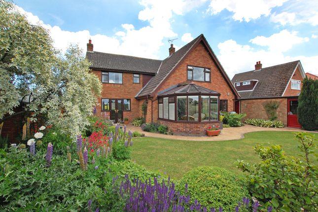 Thumbnail Detached house for sale in School Lane, Hales, Norwich