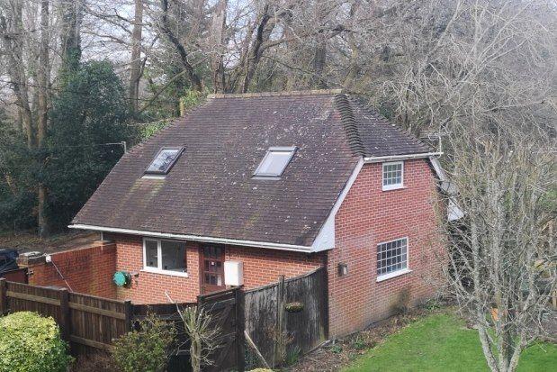 Thumbnail Flat to rent in Tatchbury Mount, Calmore, Southampton