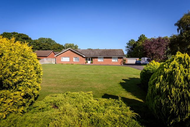 Thumbnail Detached bungalow for sale in Burgh Road, Bradwell
