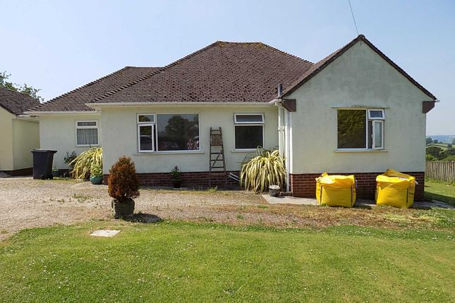 Thumbnail Detached bungalow to rent in Hawkchurch, Axminster