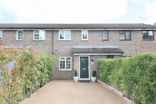 Thumbnail Terraced house to rent in The Potteries, Farnborough