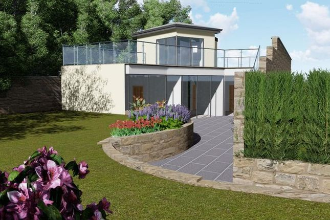Thumbnail Detached house for sale in Clappentail Lane, Lyme Regis