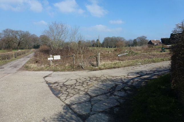 Thumbnail Land for sale in Ashurst Wood, East Grinstead