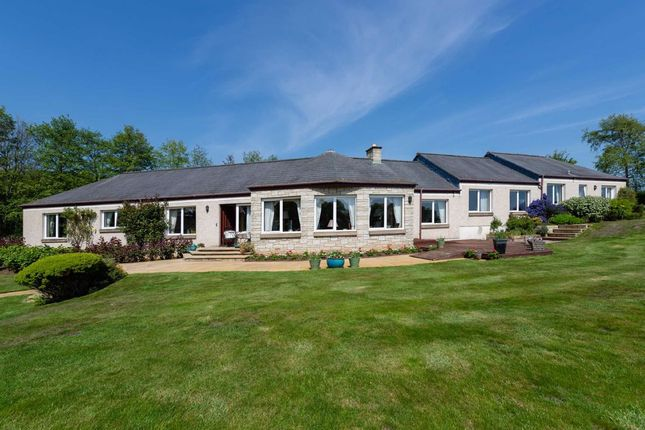 Thumbnail Detached house for sale in Charleton Estate, Colinsburgh, Fife