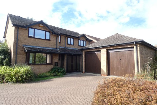 Thumbnail Detached house to rent in Payne Road, Wootton, Bedford