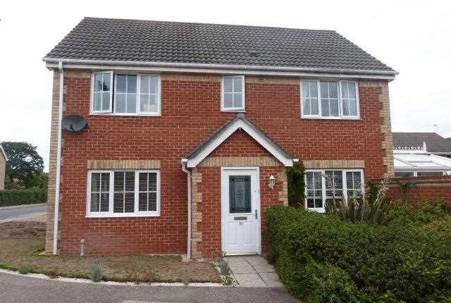 Thumbnail Detached house to rent in Dobbs Drift, Kesgrave, Ipswich