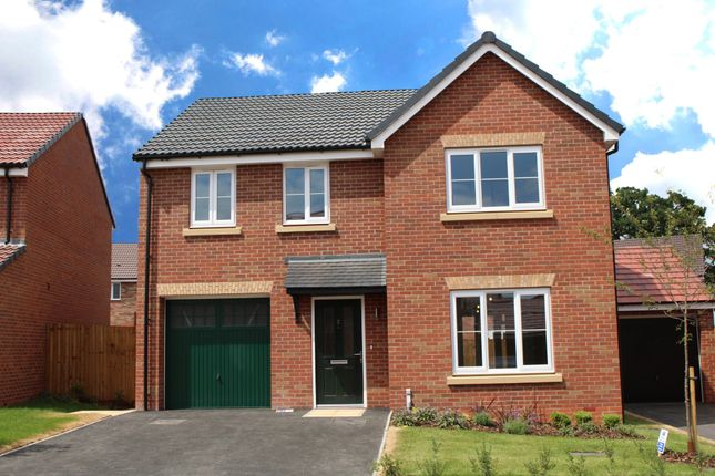 Thumbnail Detached house for sale in Manston View, Tamworth