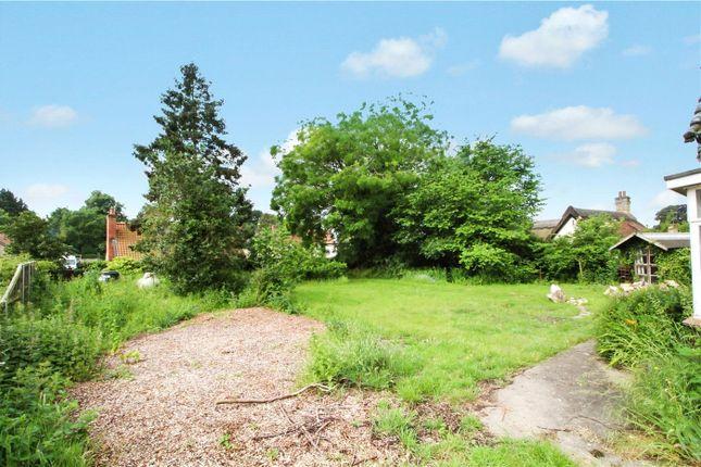 Front Garden of The Street, Shotesham All Saints, Norwich, Norfolk NR15