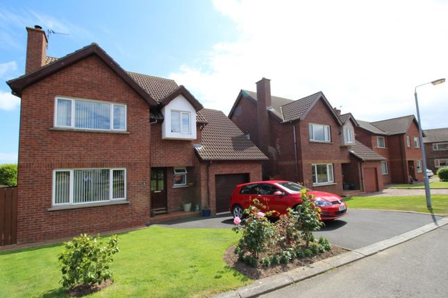 Thumbnail Detached house for sale in Glenganagh Park, Groomsport, Bangor